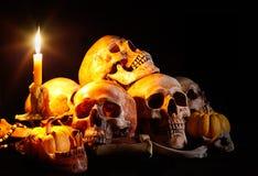 cráneos Foto de archivo