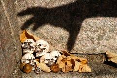 Cráneos atrapados Imagenes de archivo