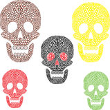 Cráneos coloridos Foto de archivo libre de regalías