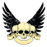 Cráneos con las alas Fotografía de archivo libre de regalías