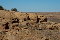Cráneos en piedra Foto de archivo