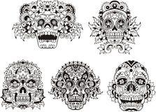 Cráneos florales Imagen de archivo libre de regalías