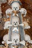 Cráneos humanos Fotografía de archivo