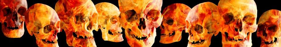 Cráneos humanos ardientes a diversos ángulos en un fondo negro El jefe o el pie de página de la imagen fotografía de archivo