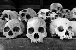 Cráneos humanos en los campos de la matanza Fotos de archivo