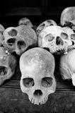 Cráneos humanos en los campos de la matanza Foto de archivo