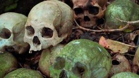 Cráneos humanos verdes cubiertos de musgo viejos que ponen en la tierra, moneda en órbita, cementerio de Trunyan almacen de video