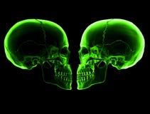 Cráneos verdes Foto de archivo libre de regalías