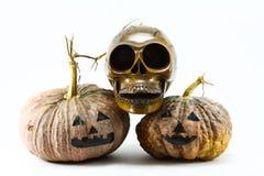 Cráneos y calabaza humanos en el fondo negro, fondo del día de Halloween Fotos de archivo libres de regalías