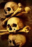 Cráneos y huesos fotografía de archivo libre de regalías