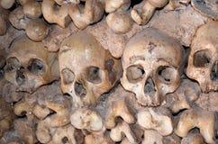 Cráneos y huesos Fotos de archivo libres de regalías