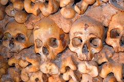 cráneos y huesos fotografía de archivo