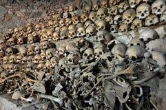 Cráneos y huesos Foto de archivo