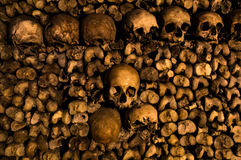 Cráneos y huesos imágenes de archivo libres de regalías