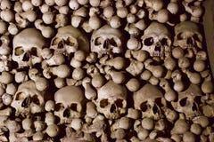 Cráneos y huesos apilados Foto de archivo libre de regalías