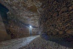 Cráneos y huesos de las catacumbas de París Imagen de archivo libre de regalías