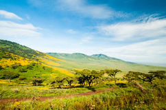 Cráter de Ngorongoro, Tanzania Imagen de archivo