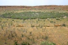 Cráter del meteorito de la cala de Wolfe. Australia Fotos de archivo