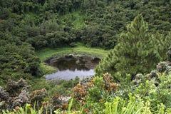 Cráter en Mauricio Imágenes de archivo libres de regalías