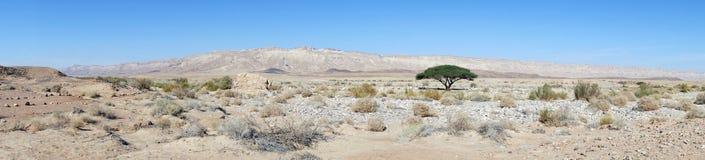 Cráter Ramón Imágenes de archivo libres de regalías