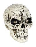 Crâne Photographie stock libre de droits