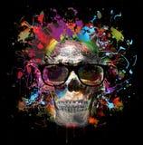 crâne illustration stock