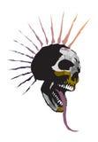 Crâne   Images libres de droits