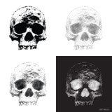 Crâne 01 illustration libre de droits