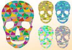 Crâne avec des modèles Images stock