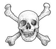 Crâne avec l'illustration croisée de deux os, dessin, gravure, encre, schéma, vecteur illustration de vecteur