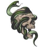 Crâne avec l'illustration de serpent Photo libre de droits