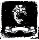 Crâne avec la zone des textes Images libres de droits