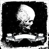 Crâne avec la zone des textes Photo stock