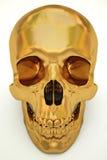 Crâne d'or Photos stock