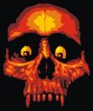 Crâne d'humain de danger illustration libre de droits