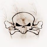 Crâne dans la fumée illustration de vecteur
