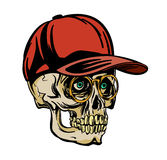 Crâne dans la tasse Images stock