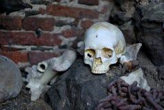 Crâne dans le Dungeon de château Image libre de droits