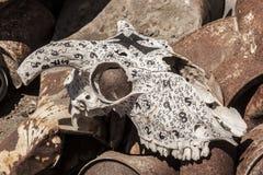 Crâne de chèvre peint avec des nombres Photographie stock libre de droits