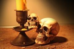 Crâne de deux humains Image stock