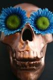 Crâne de fleur images stock