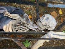 Crâne de Halloween Images libres de droits