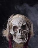Crâne de moissonneuse sinistre photo libre de droits