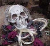 Crâne de moissonneuse sinistre image libre de droits