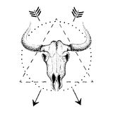 Crâne de taureau avec des klaxons Photo libre de droits