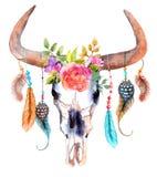 Crâne de taureau d'aquarelle avec des fleurs et des plumes Photographie stock libre de droits