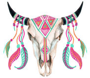 Crâne de vache à aquarelle Photo libre de droits