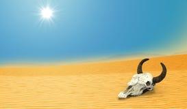 Crâne de vache à la mort dans le désert Photos libres de droits