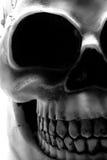 Crâne de Veille de la toussaint Photos stock