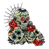 Crâne doux images stock